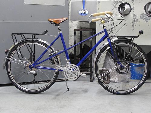 Ant_bike