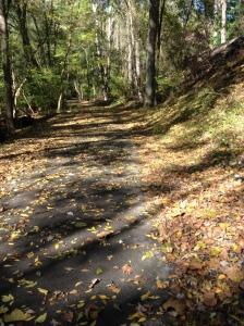 Grist Mill Path, Patapsco State Park